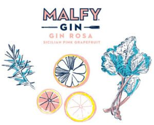 Malfy Italian | Rosa Gin | Illustration
